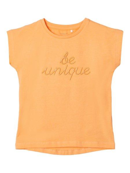 NAME IT T-Shirt 10559524